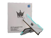HOF OC Lab Arduino D4-3600 16G