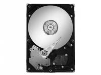 Seagate ST3160215ACE