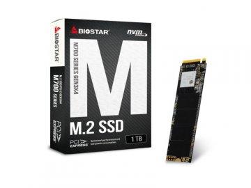 BIOSTAR M700-1TB 01 PCパーツ ドライブ・ストレージ SSD