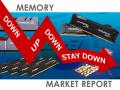 「上げ下げ分散継続、ただし定番アイテムの価格は下落 」PCメモリー価格動向ピックアップレポート - 2015年11月2週目版