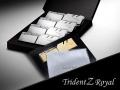 ゴージャス系DDR4 OCメモリー、G.Skillの「Trident Z ROYAL」シリーズに16GBモジュールモデル各種追加ラインアップ